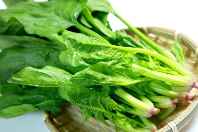 spinach-fried-tofu-shiradashi-boiled